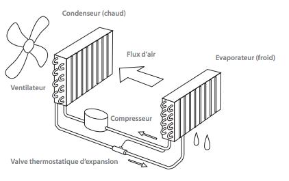 Fonctionnement simplifié d'un déshumidificateur avec condensation